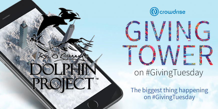 Dolphin Project #GivingTuesday Challenge