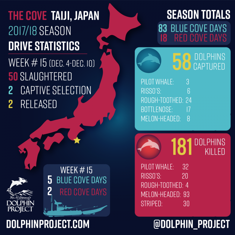 Taiji Drive Fisheries Update - Week #15