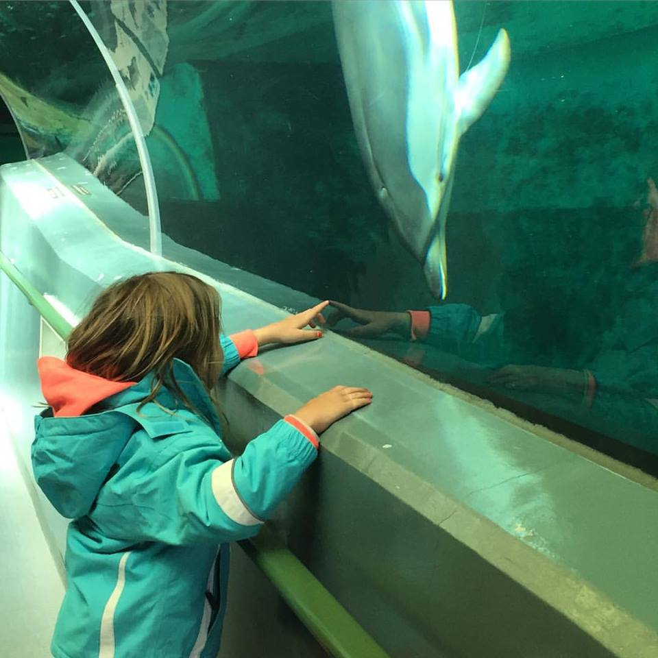 Imogen visiting the Taiji Whale Museum