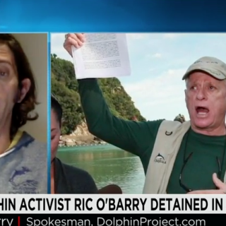 Lincoln O'Barry speaks with CNN International on Ric O'Barry's Ongoing Detention in Tokyo, Japan