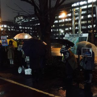Tokyo demo to end dolphin killings and captivity