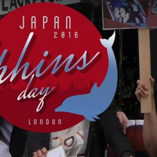 Japan Dolphins Day, London, September 1