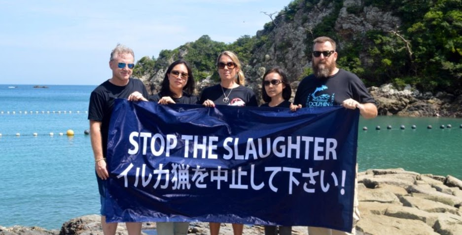 Dolphin Project Cove Monitors Stop the Slaughter