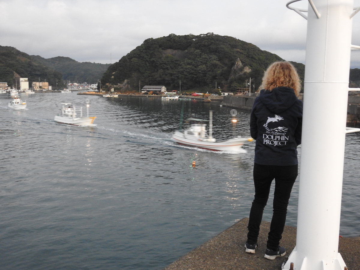 Helene O'Barry watches as hunting boats leave Taiji harbor in search of migrating dolphin pods, Taiji, Japan