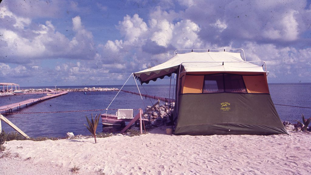 Original Dolphin Project readaption center in the Florida Keys circa 1971.