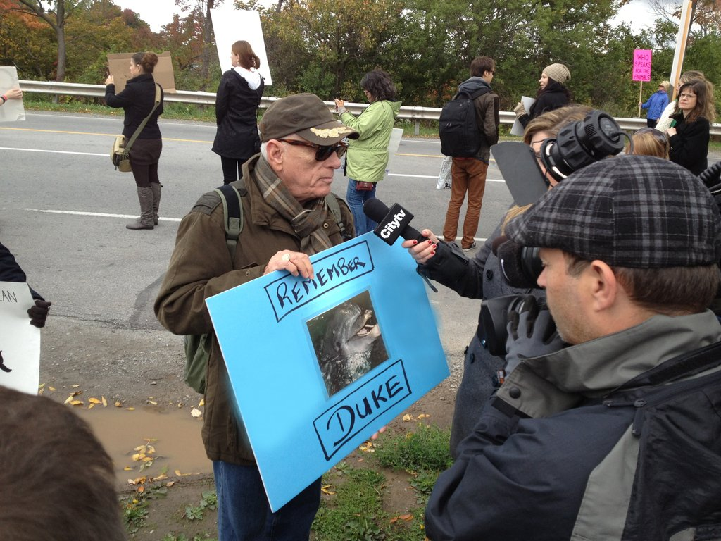 Ric O'Barry is interviewed by CityTV as he protests in front of Marineland, Niagara Falls