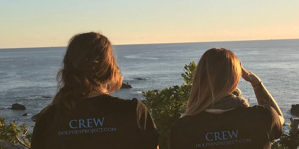 Interested in joining us in Taiji as a volunteer Cove Monitor?