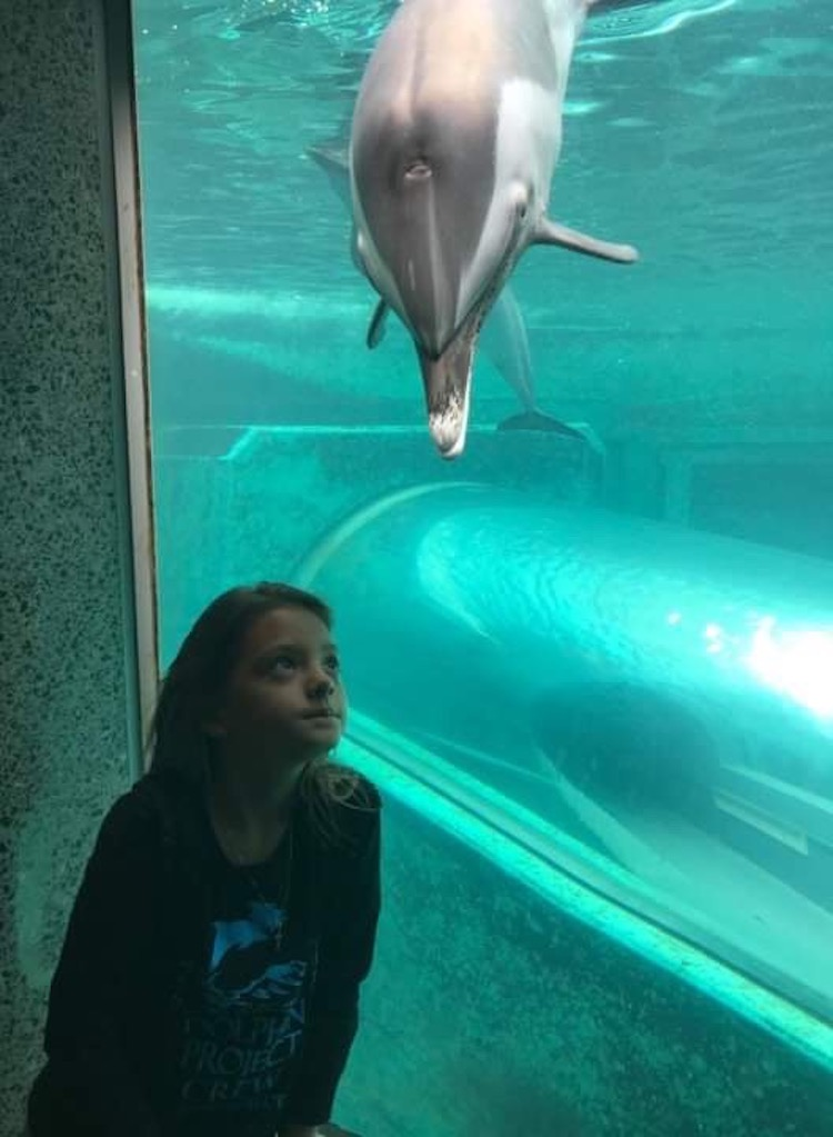 Imogen reflects on how wrong it is to keep dolphins in captivity.