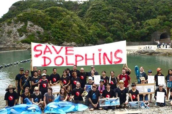Dolphin Project Team at The Cove Taiji