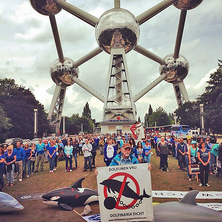 400 At Brussels Dolphin Demo