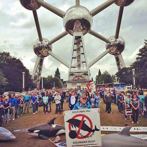 Brussels Demo 2014