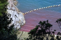 Taiji Dolphin Hunts Closing Down for Season