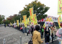 Japan's Growing Animal Rights Movement