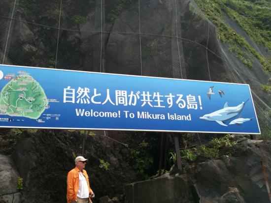 Mikura Island: Where Japanese Love Wild Dolphins