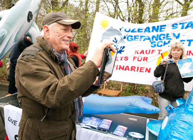 Protecting Dolphins in Germany & Switzerland