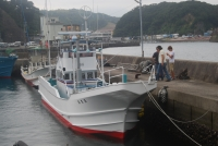 Taiji Update: Dolphin Quotas and Mercury