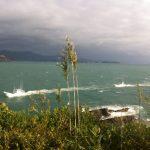 Taiji_Boats_VKirchoff_9-13