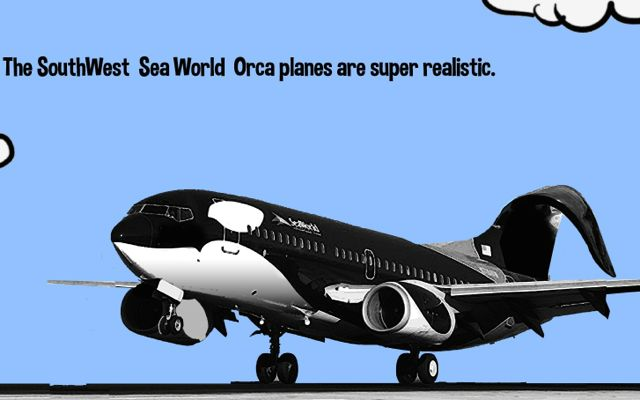 Southwest Cut Ties with SeaWorld in 2014 #BlackfishEffect