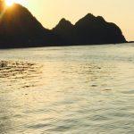 Taiji, courtesy DolphinProject.net