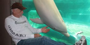 Ric O'Barry visits the Taiji Whale Museum, home to the albino bottlenose dolphin named 'Angel.'