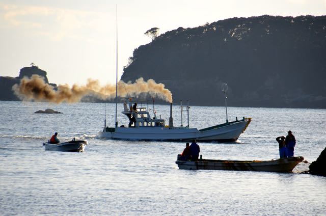 Black smoke puffs out of a banger boat chasing dolphins. Photo: DolphinProject.net