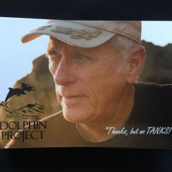 Dolphin Project Info Card