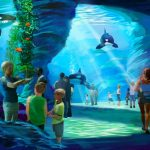 The Blue World Project proposed by SeaWorld is canceled. SeaWorld Parks & Entertainment press release