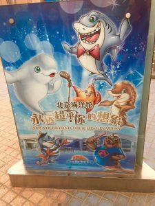 Beijing Zoo poster/DolphinProject.net