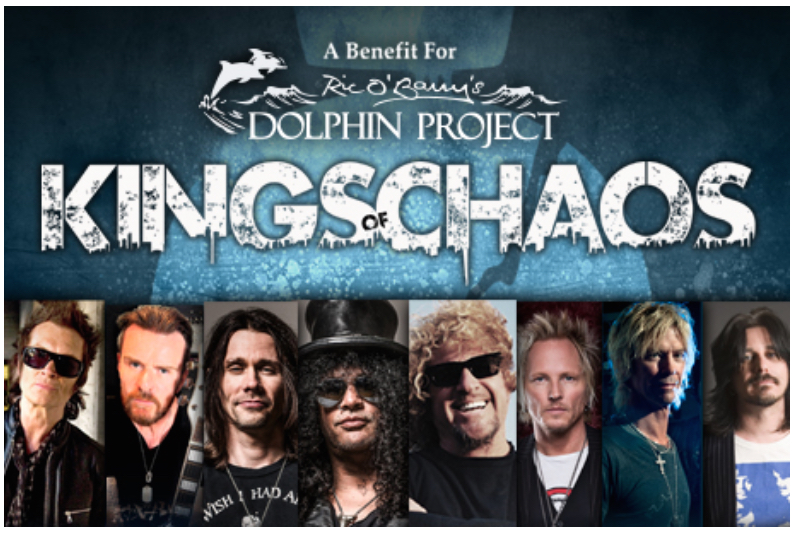 Kings of Chaos Dolphin Project Benefit