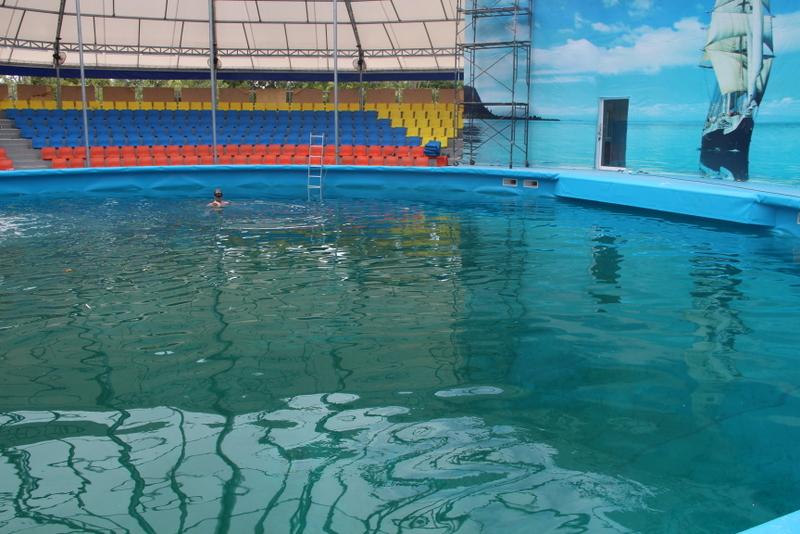 Phuket Dolphinarium Near Completion การก่อสร้างสถานที่ของธุรกิจโชว์โลมาที่จังหวัดภูเก็ตใกล้เสร็จแล้ว