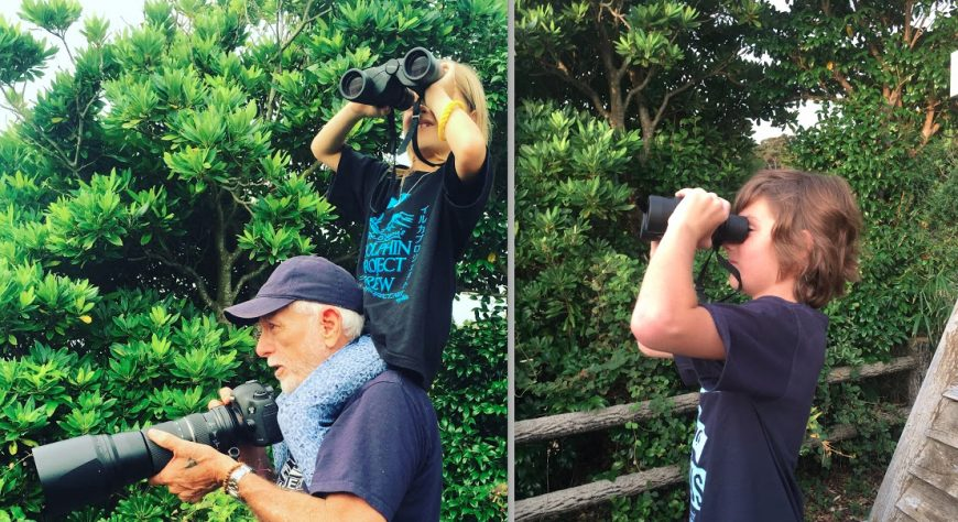 mini cove monitors report from Taiji