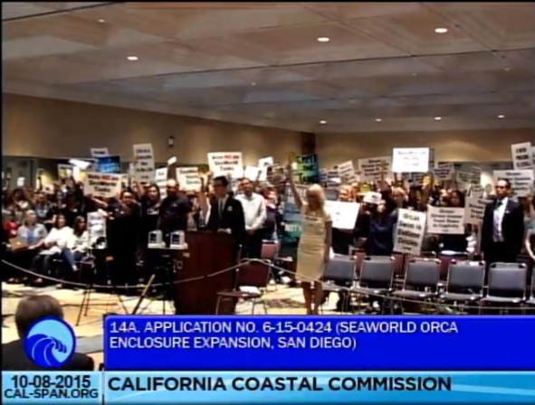 Screenshot from the live hearing at the California Coastal Commission on October 8. Image: Dolphin Project.com