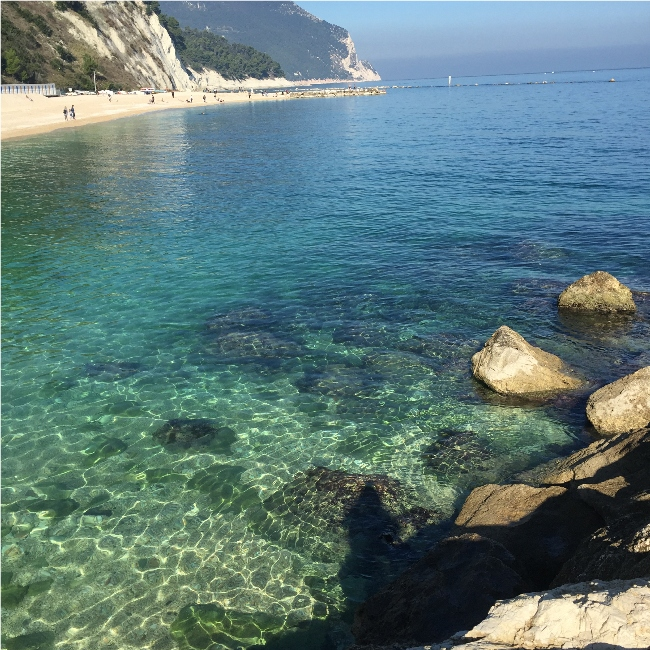 The area under consideration for the dolphin care center near Sirolo, Italy. Image: Dolphin Project
