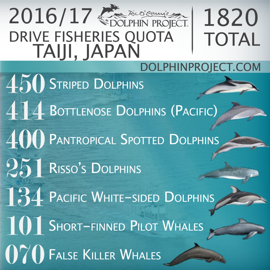 2016/17 Drive Fisheries Quota, Taiji, Japan