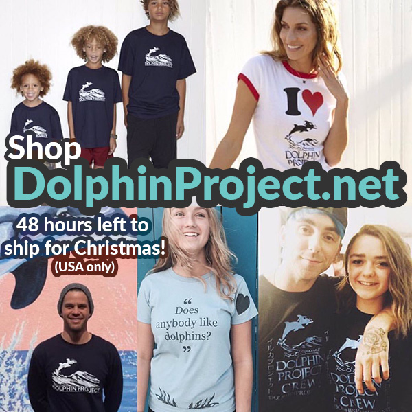 shop-dolphin-banner_600x2