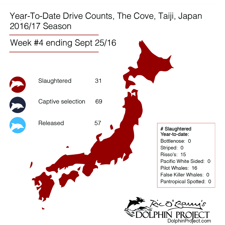 Year-to-date drive counts, Taiji, Japan, Week #4 ending September 25, 2016