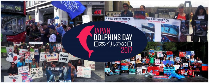 Japan Dolphins Day 2017 Taiji Dolphin Project