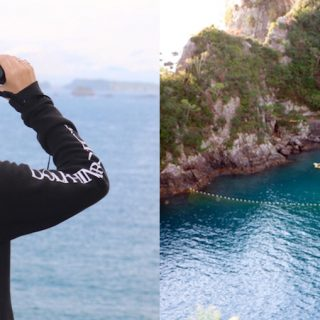 Dolphin Project Returns to Taiji