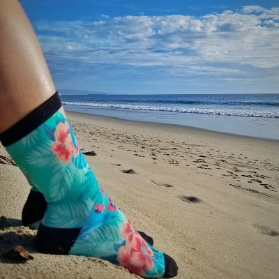 Dolphin Project bakdrop socks