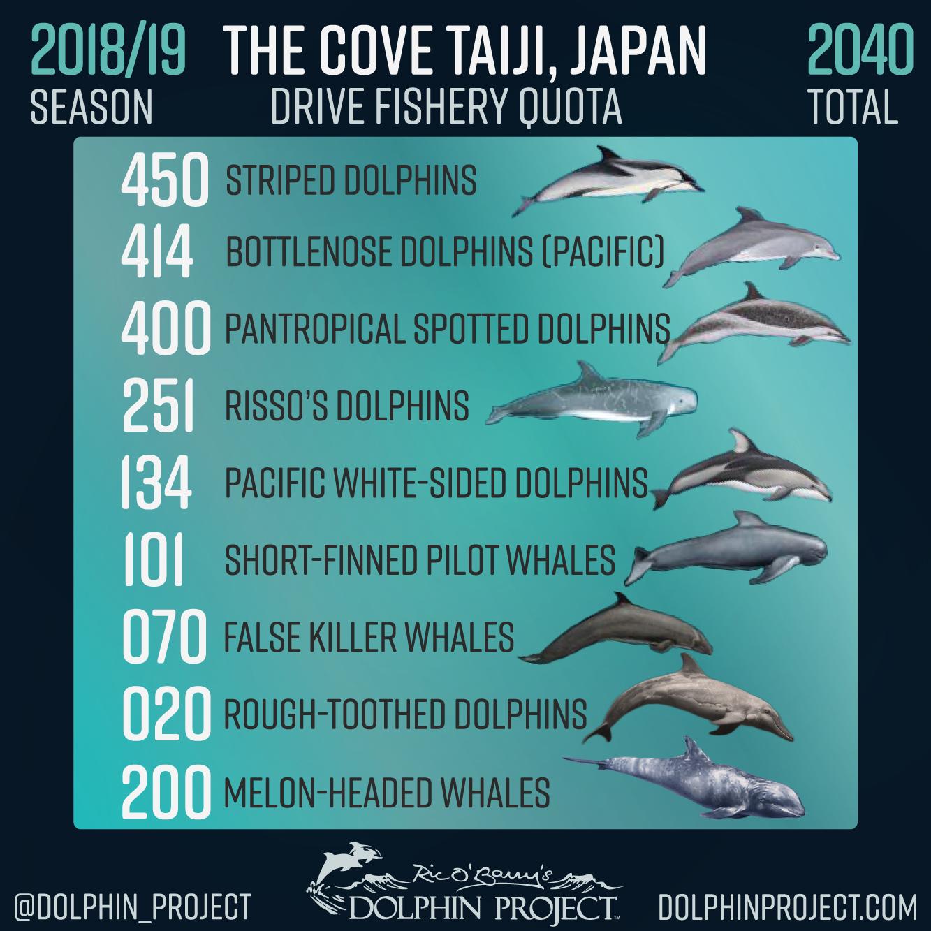 2018 19 Taiji Drive Hunt Season Quota Cove Japan